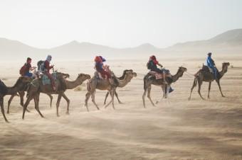 camello desierto viajes aventuras